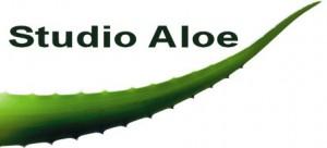 2007_sa_logo