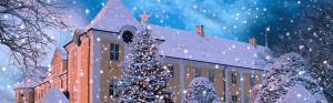 gavnoe-julebazar