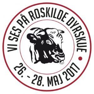 mød Magnnethjerte i Roskilde